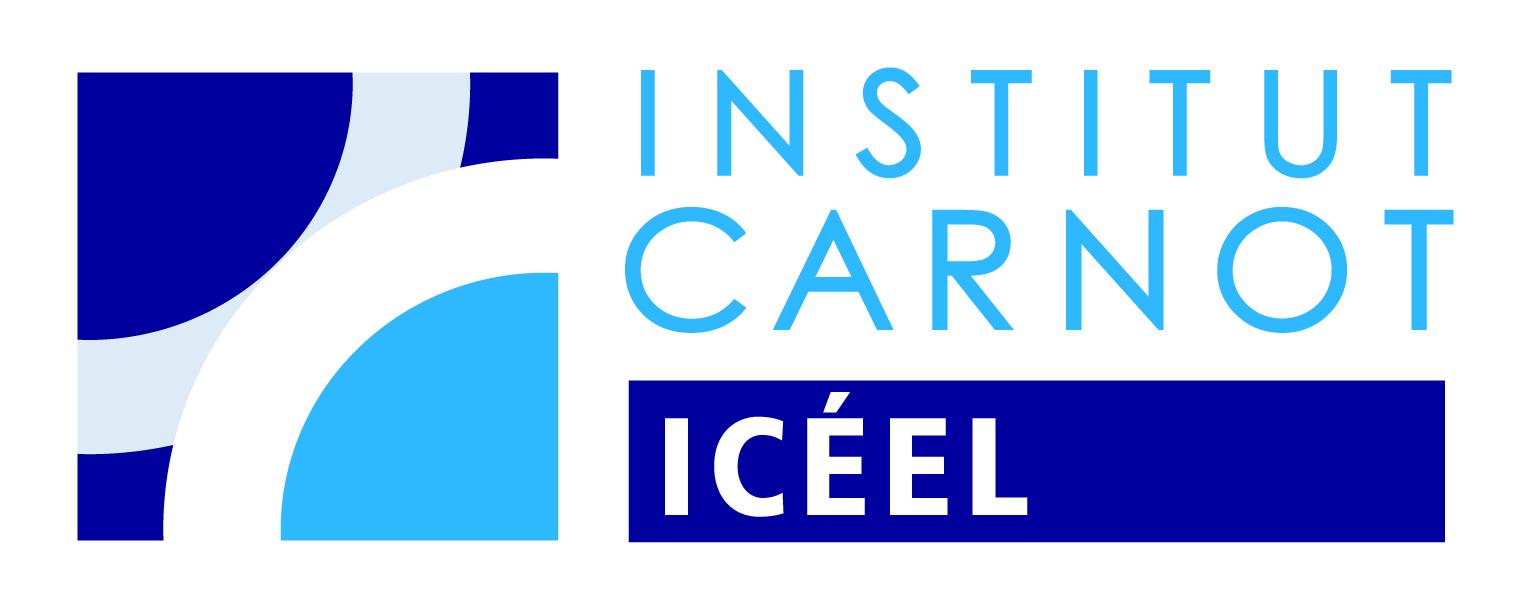 Institut Carnot - ICEEL