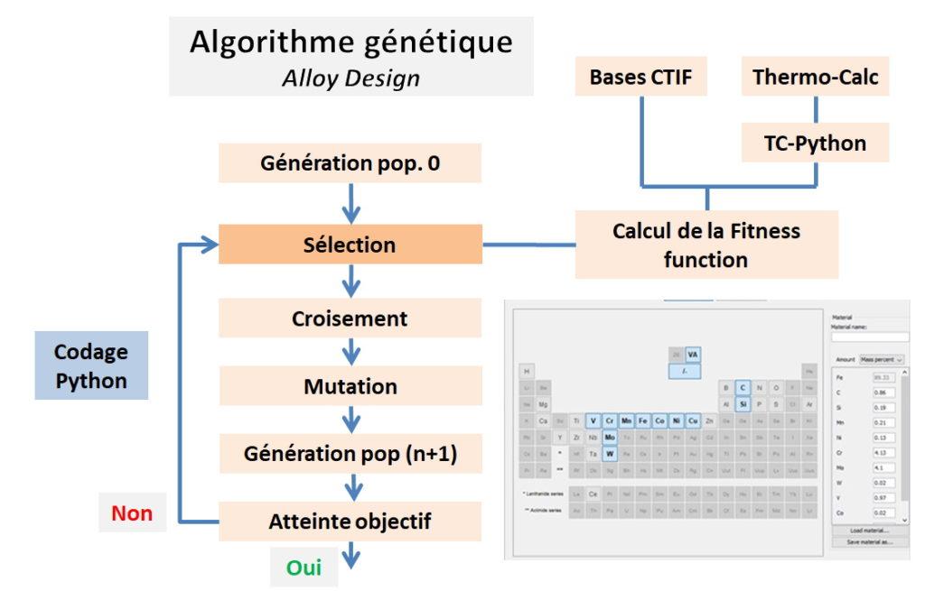 Algorithme génétique pour l'Alloy Design avec Thermo-Calc
